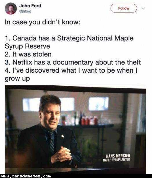 🇨🇦 I want to be a maple syrup lawyer when I'm older