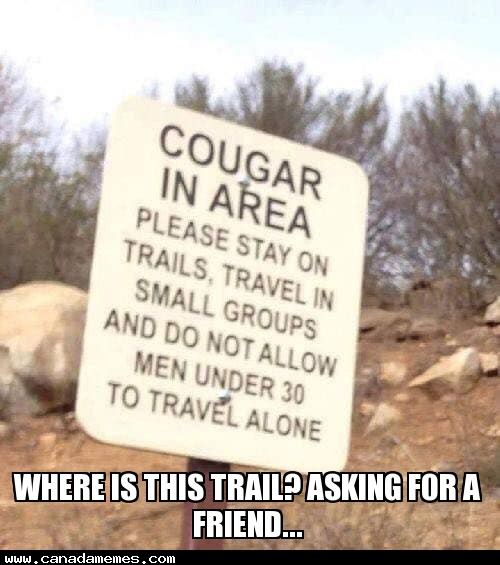 🇨🇦 Where is this trail? Asking for a friend...