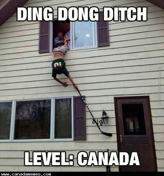 🇨🇦Ding Dong Ditch - Level: CANADA