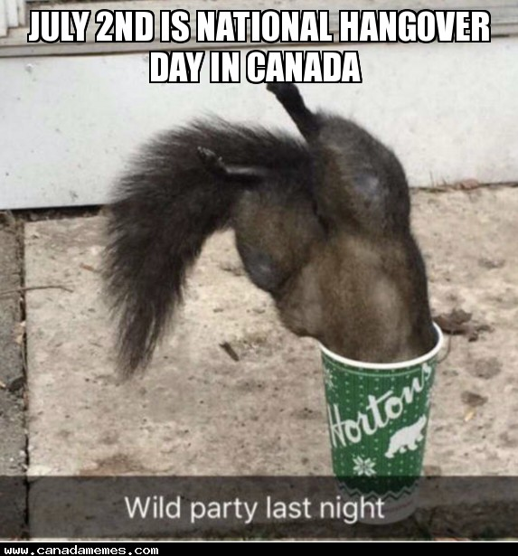 🇨🇦 July 2nd is National Hangover Day in Canada