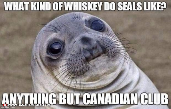 What kind of whiskey do seals like?