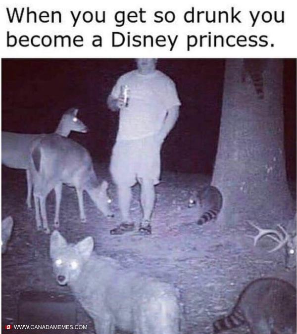 I'm a Disney princess