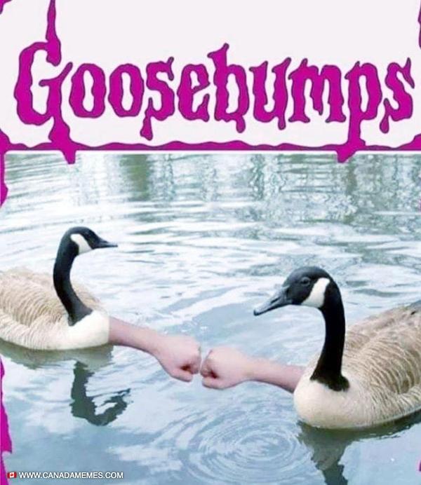 Goosebumps. I laughed way more than I should have at this!