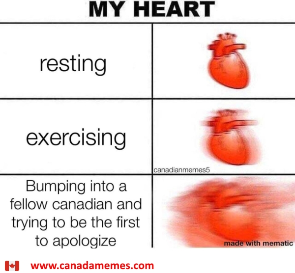 Bumping into a fellow Canadian and trying to be the first to apologize