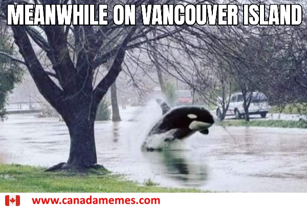 Meanwhile on Vancouver Island