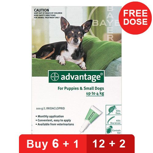 Advantage Small Dogs/ Pups 1-10lbs (Green) Buy 12 Doses - Get 2 Free