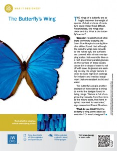 The cover of the April 2014 edition of 'Awake!' magazine, displaying a large image of a blue butterfly with an article titled 'The Butterfly's Wing', along with some smaller, supplemental information around it.