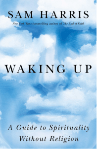 Waking Up: A Guide to Spirituality Without God, by Sam Harris