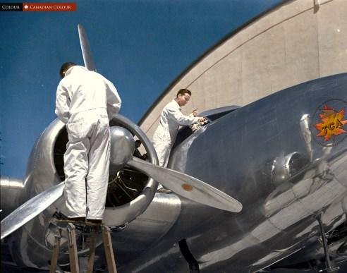 TCA - Colourized Photograph