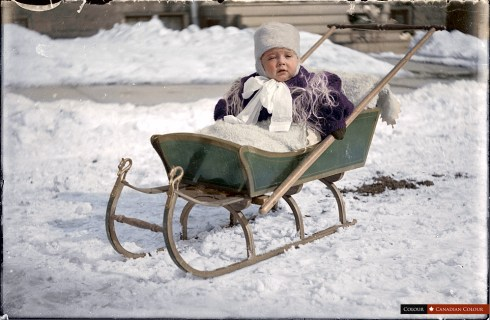 Sleigh - Colourized Photograph
