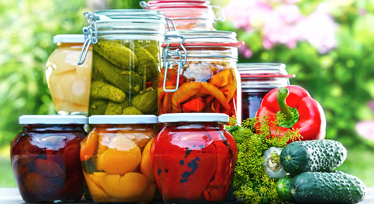 Food preservation guide ii canning and pickling tips and recipes food preservation guide ii canning and pickling tips and recipes forumfinder Choice Image