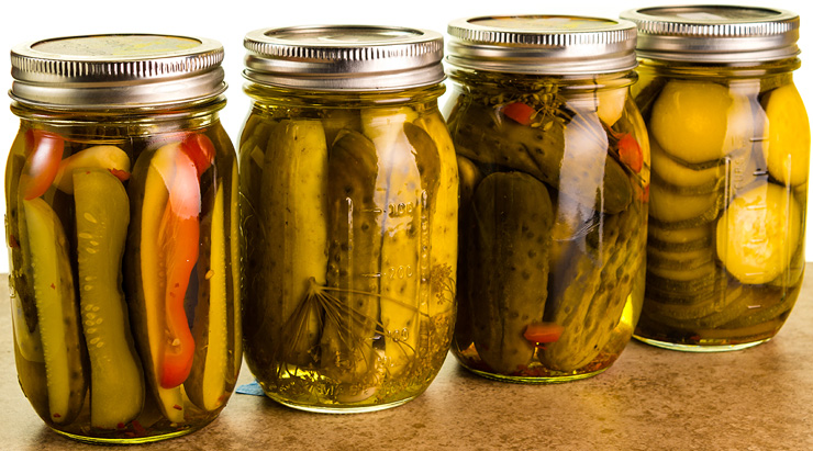 Food Preservation Guide - Refrigerator Pickles
