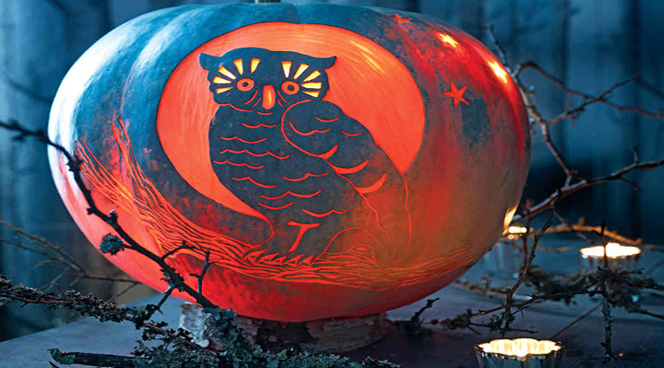 graphic about Angry Birds Pumpkin Carving Patterns Printable known as Least difficult Internet websites for No cost Printable Pumpkin Carving Designs