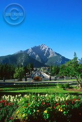 Banff Avenue is beautiful all year round.