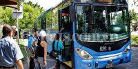 buses-mio