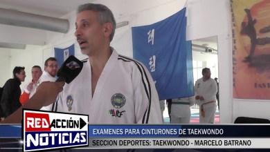 Photo of Redacción Noticias |  MAESTRO MARCELO BATRANO  REFERENTE PRINCIPAL DE TAEKWONDO ITF DE ARGENTINA – LAS HERAS SANTA CRUZ