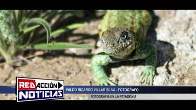 Photo of Redacción Noticias |  FOTOGRAFO DE COMODORO RIVADAVIA – LAS HERAS SANTA CRUZ (COMUNICACION TEL.)