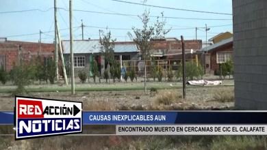 Photo of Redacción Noticias |  SE ENCONTRO MUERTO EN CERCANIAS DEL CIC CALAFATE – LAS HERAS SANTA CRUZ
