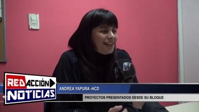 Photo of Redacción Noticias |  HCD – ANDREA YAPURA PROYECTOS DESDE SU BLOQUE – LAS HERAS SANTA CRUZ