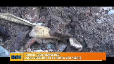 Photo of Redacción Noticias |  HUERTA de Vecino -Las Heras Santa Cruz.