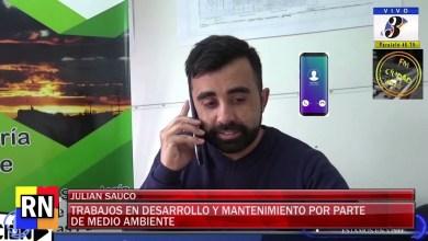 Photo of Redacción Noticias    Julian Sauco – Trabajos en desarrollo por parte de medio ambiente.