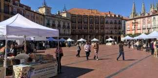 Dia del Libro Burgos