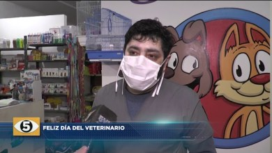 Photo of 5VN Cinco Visión Noticias |  DÍA DEL VETERINARIO