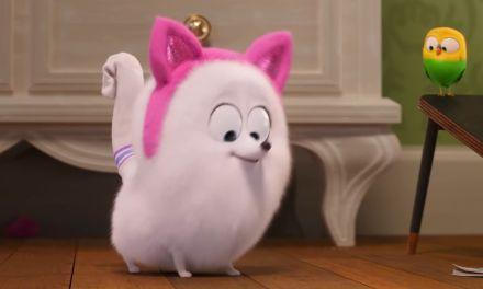 Descubre tu nueva gatitud en el adelanto de la Vida Secreta de las Mascotas 2