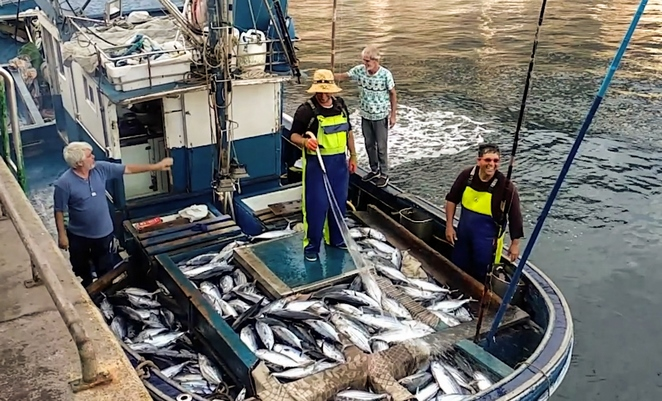 flota pesquera