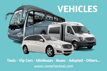 Our vehicles in Canarias Taxi