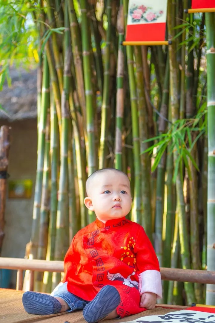 baby in red shirt sitting near green bamboo tree