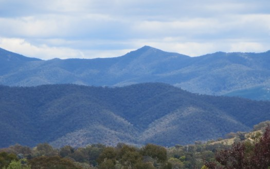 The Brindabellas
