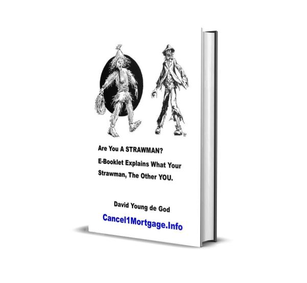 How to termininate your strawman e booklet cover1