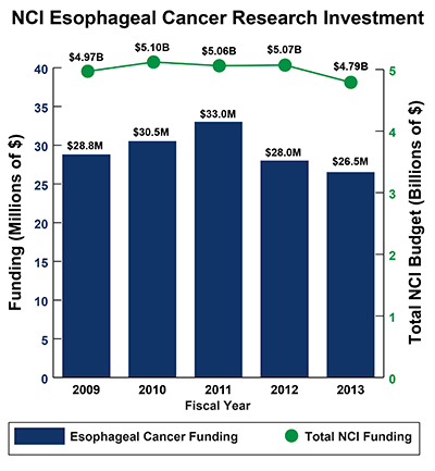 Bar graph of NCI Esophageal Cancer Research Investment in 2008-2012: Fiscal year (FY) 2009, $28.8 million Esophageal Cancer Funding of $4.97 billion Total NCI Budget. FY 2010, $30.5 million Esophageal Cancer Funding of $5.10 billion Total NCI Budget. FY 2011, $33.0 million Esophageal Cancer Funding of $5.06 billion Total NCI Budget. FY 2012, $28.0 million Esophageal Cancer Funding of $5.07 billion Total NCI Budget. FY 2013, $26.5 million Esophageal Cancer Funding of $4.79 billion Total NCI Budget.