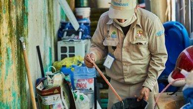 Photo of Implementan acciones para erradicar el dengue en Cozumel