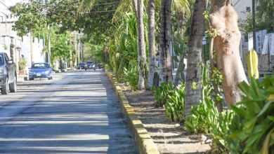 Photo of Rehabilitan la avenida Rojo Gómez en Puerto Morelos