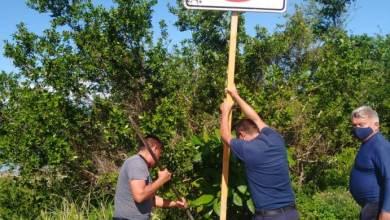 Photo of Brindan mantenimiento a señalamientos viales en Cozumel