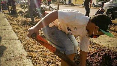 Photo of Redoblan esfuerzos de limpieza en Solidaridad