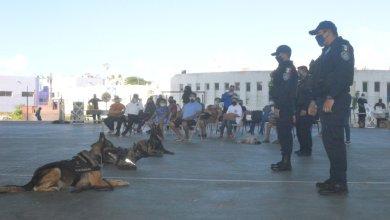 """Photo of Se realiza en Isla Mujeres la primera feria de prevención """"Vive Seguro"""""""