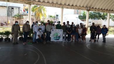 Photo of Reforestan el domo de la Colonia «La Gloria» en Isla Mujeres
