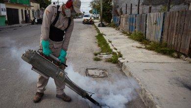 Photo of Refuerzan acciones para combatir el mosquito del dengue en Cozumel