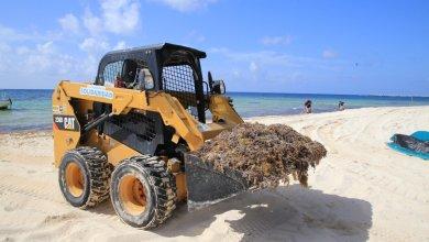 Photo of Continua el combate al sargazo en playas de Solidaridad