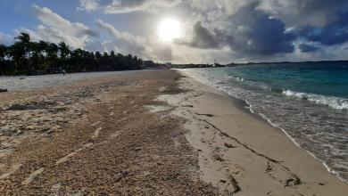 Photo of Mantienen en optimas condiciones Playa Norte en Isla Mujeres