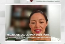 Photo of TEQROO realiza Diálogos por la Democracia de Mexicanos por Naturalización