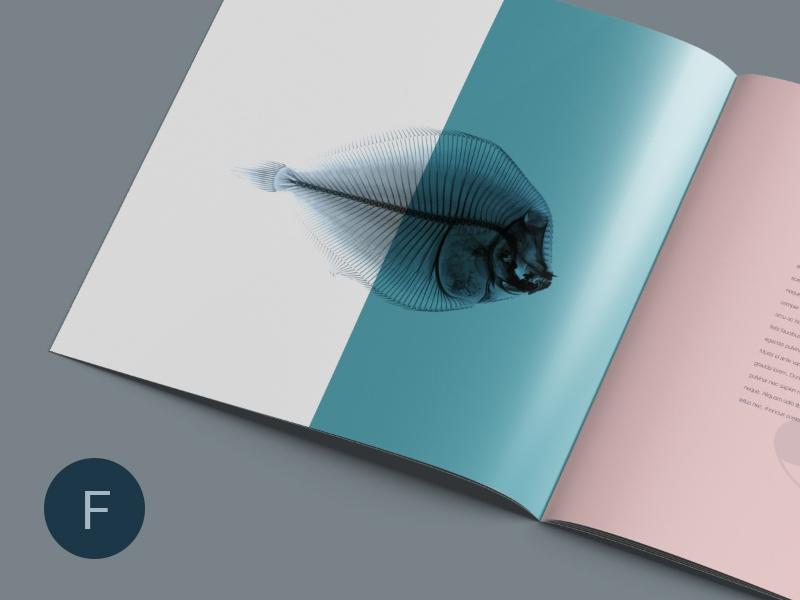 square brochure mockup wassim on dribbble