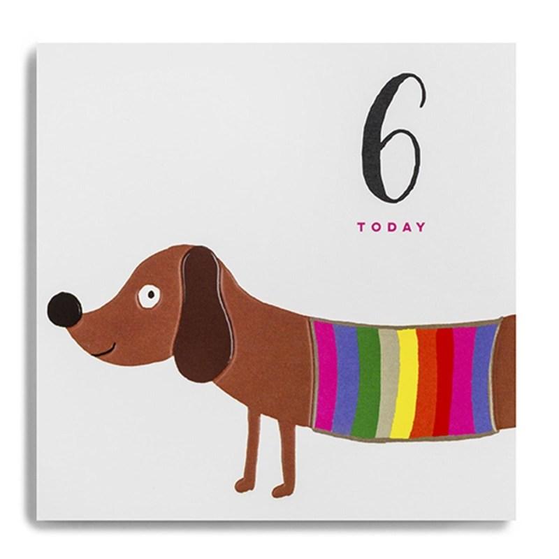 sausage dog 6 today birthday card