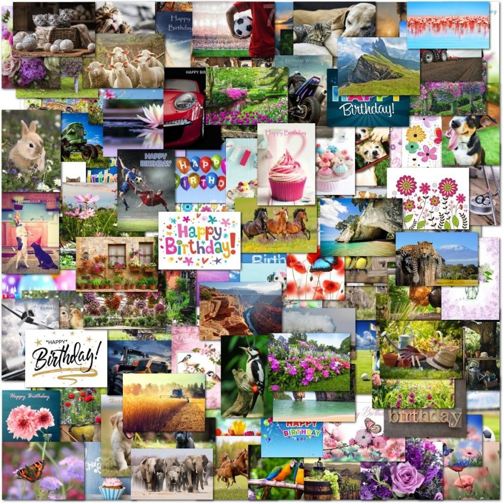 cards stationery celebrations occasions cards