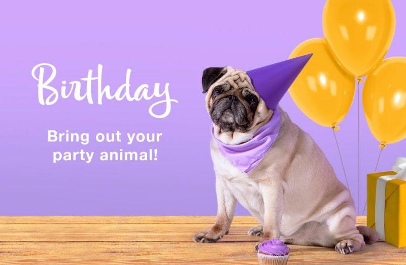 birthday cards greetings american greetings