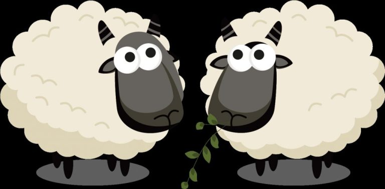 eid mubarak vector two sheeps