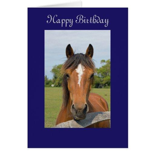 beautiful horse happy birthday greetings card zazzle